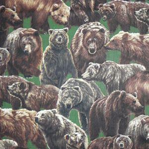 Brunbjørne