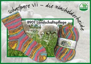 Opal Schafpaté VII - 8901