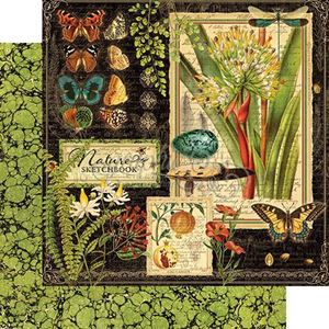 Designpapir 12x12 fra Graphic 45 - Nature Sketchbook