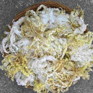 Håndmalede Wensleydale krøller fra Ægbækgaards egne får