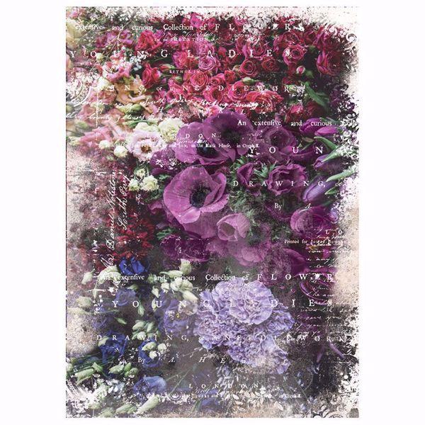 Re-Design with Prima - Giselle - 48,3 x 76,2 cm Mulberry Tissue Paper til decoupage scrapbooking og kort - 644673