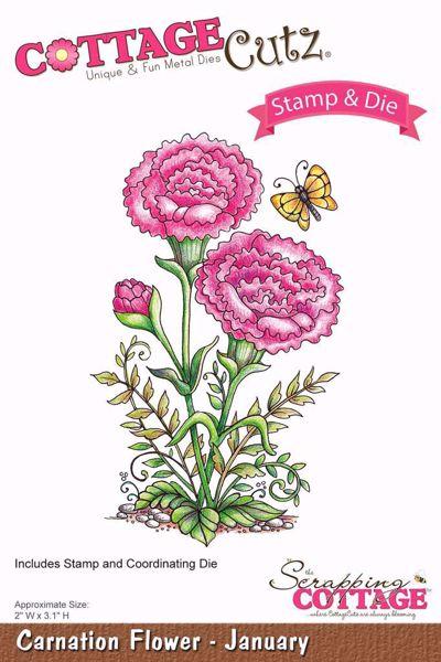 Carnation Flower - January  - Nellike - standsejern til scrapbooking - CCS-002