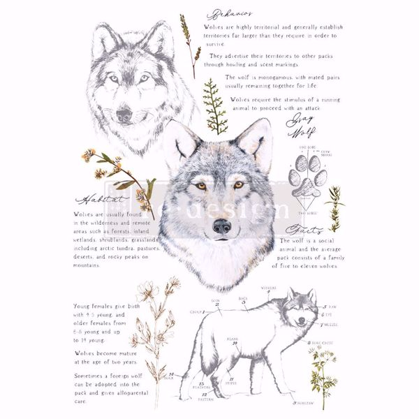 Re-design with Prima - Grey Wolf 60 x 88 cm Decor Transfer - 646226