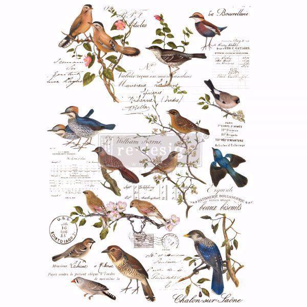 Re-design with Prima - Postal Birds 60 x 88 cm Decor Transfer - 647551